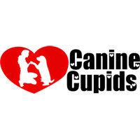 Benefit Concert for Canine Cupids Rescue featuring Shirley Green